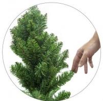 Colocar las ramas
